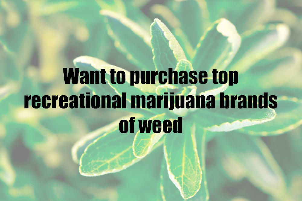 Want to purchase top recreational marijuana brands of weed